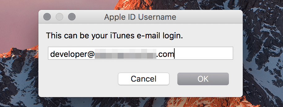 AppleID E-Mail Eingabe