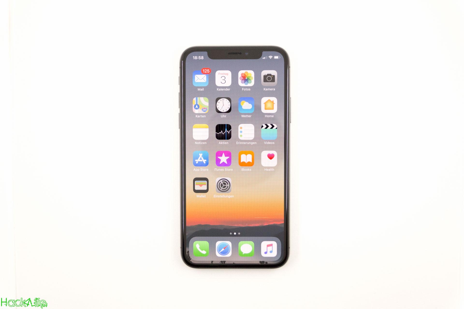 iPhone X Review auf Hack4Life - Fabian Geissler