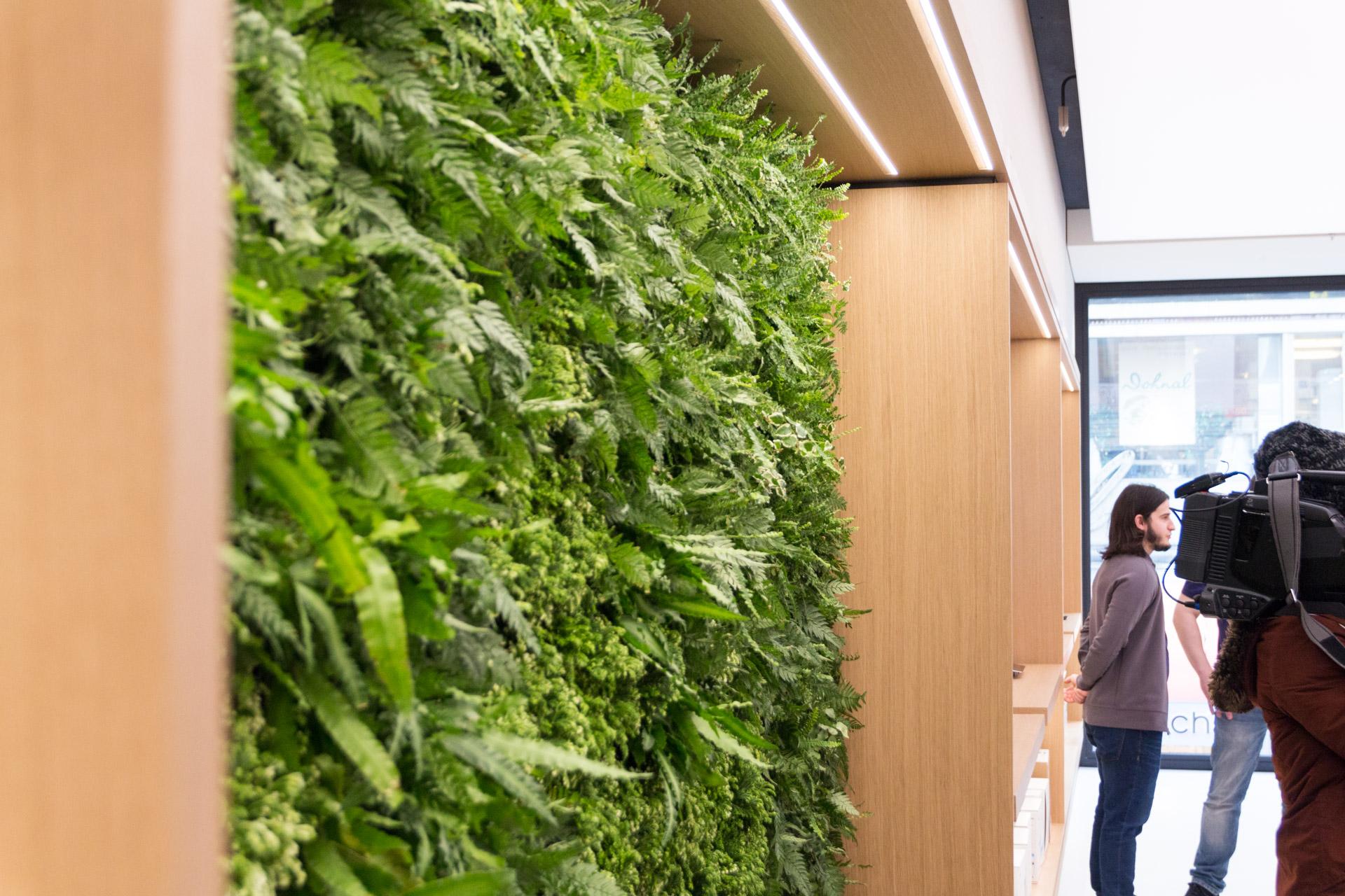 Sitzgelegenheit mit einer Pflanzenwand im Apple Store Kärntnerstraße, Wien, Hack4Life, Fabian Geissler