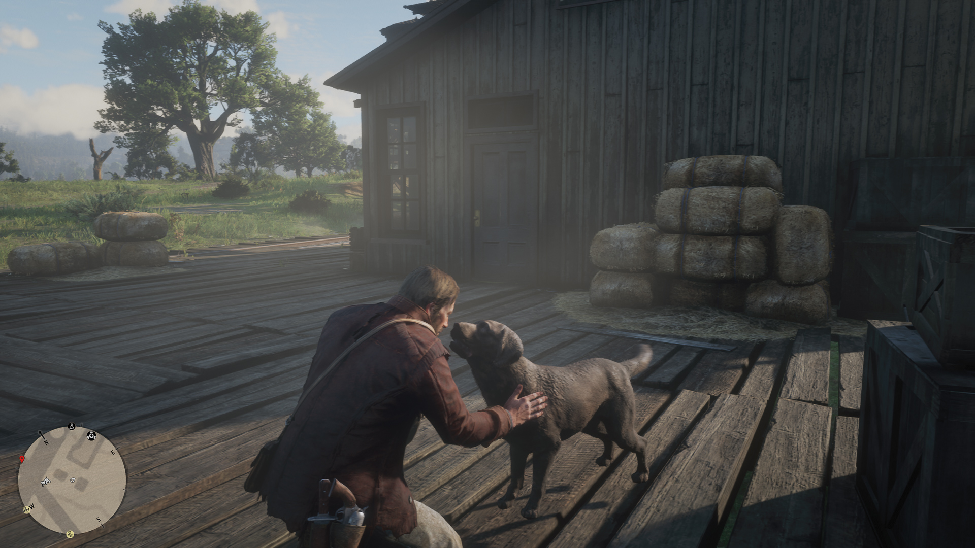 Hunde sind der beste Freund des Menschen, Red Dead Redemption 2, Arthur Morgan, Van der Linde Gang, Hilfe, Review, Meinung, Playstation 4 Pro, Hack4Life, Fabian Geissler