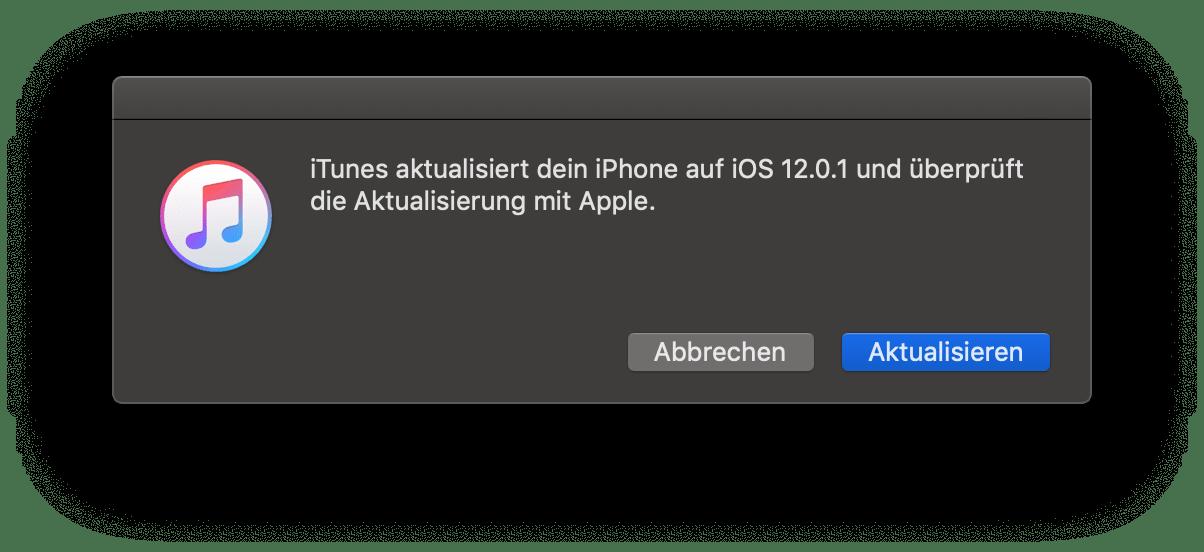 iTunes Hinweis, iOS 12.0.1, Installation, Hack4Life, Fabian Geissler