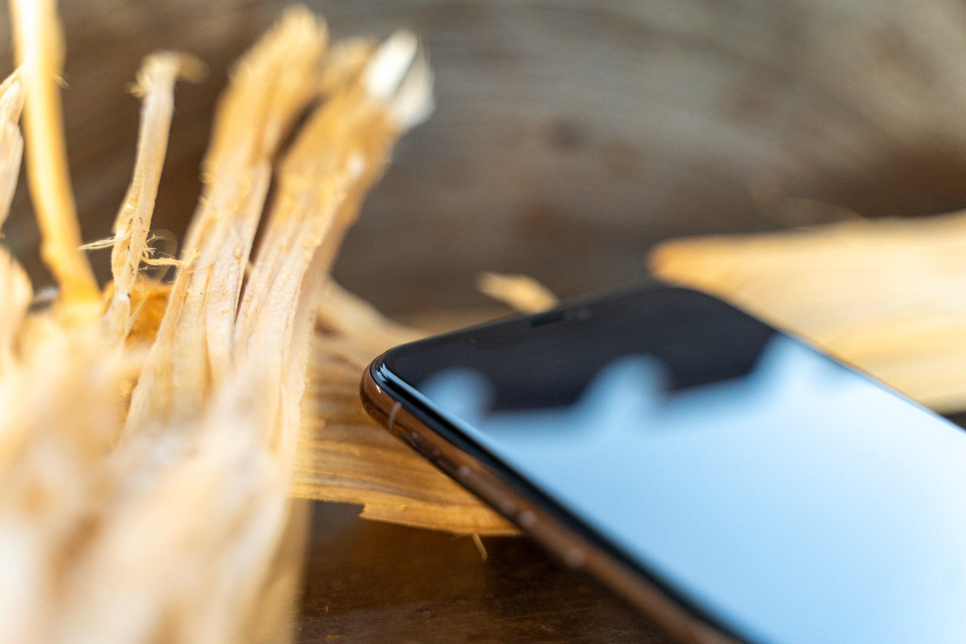 Optimaler Schutz für das iPhone 11 Pro dank CellBee, Hack4Life, Review, Testbericht, Fabian Geissler, Apple, iPhone, Holz, Kreissäge, Handwerker