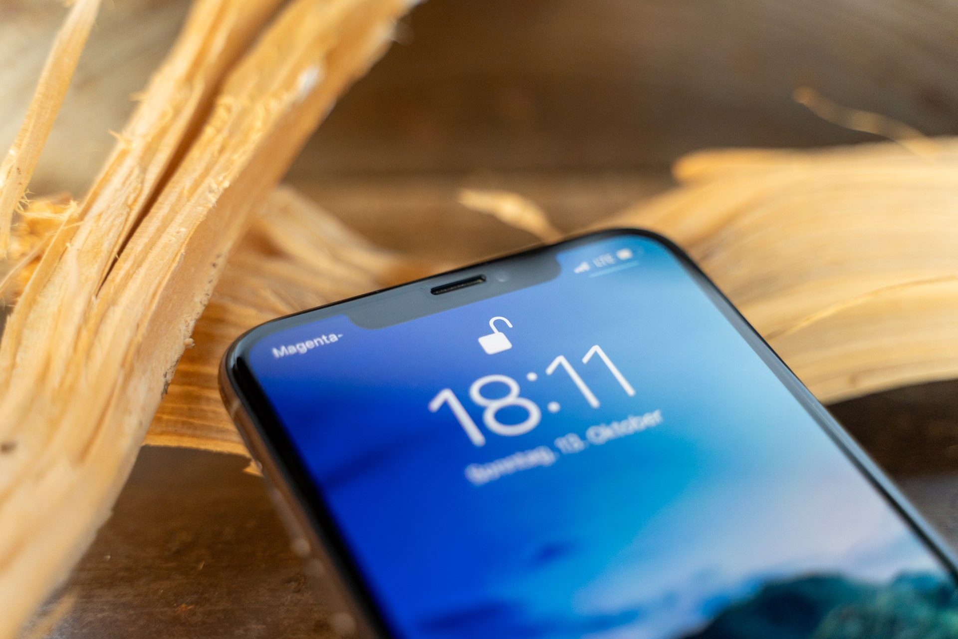 Kein Unterschied in der Verwendung des iPhone 11 Pro Max mit CellBee, Fabian Geissler, Review, Hack4Life, Apple, iPhone 11, iPhone 11 Pro Max, iPhone mit Holz im Hintergrund